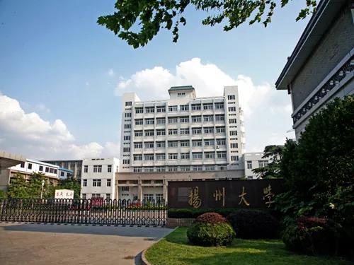 扬州大学.png
